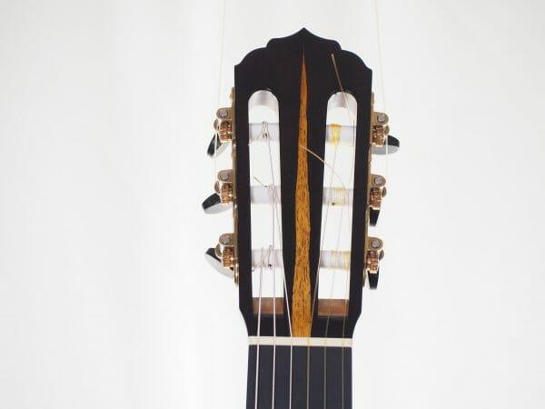 Klassische gitarre reza safavian