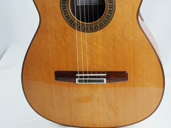 Vicente Carillo Konzertgitarre Herencia